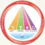 Integrative Nutrition Pyramid
